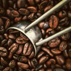 coffeebeans-summer-hopicoffee-coffeestand-organic-decaf-fukuoka-ohashi-cafe